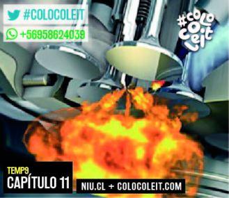 CAP 11 CCL -22